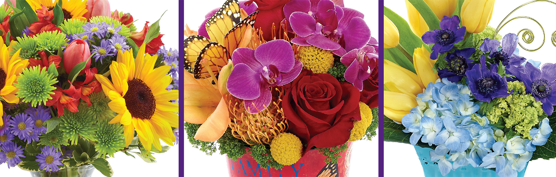 Bloomnet World Class Florists World Wide Delivery